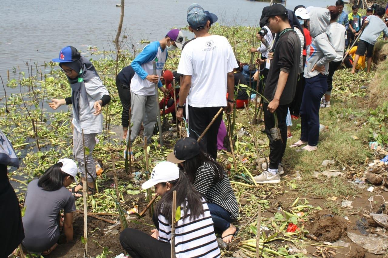 BEM Fakultas Pertanian UPY Bekerja sama dengan Sosmas DIY Adakan Kegiatan GO GREEN di Pantai Baros, Yogyakarta